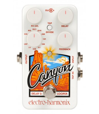 Electro Harmonix Canyon Delay & Looper coming soon