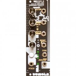 Meng Qi DU-KRPLS (Circuit-Bent Digital Waveguide)