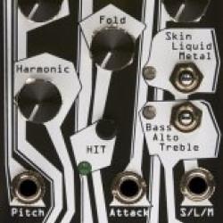Noise Engineering Basimilus Iteritas Alter Black