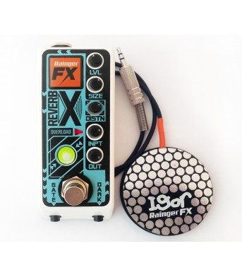 Raigner FX Reverb-X digital reverb (& Igor) mini-pedal