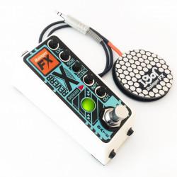 Rainger FX Reverb-X digital reverb (& Igor) mini-pedal