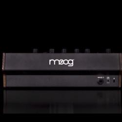 Moog DFAM