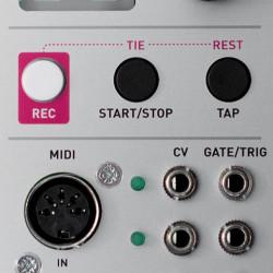 Mutable Instruments Yarns Midi Cv Interface